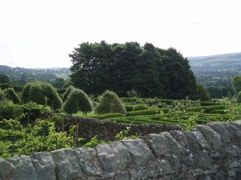 Medieval Gardening