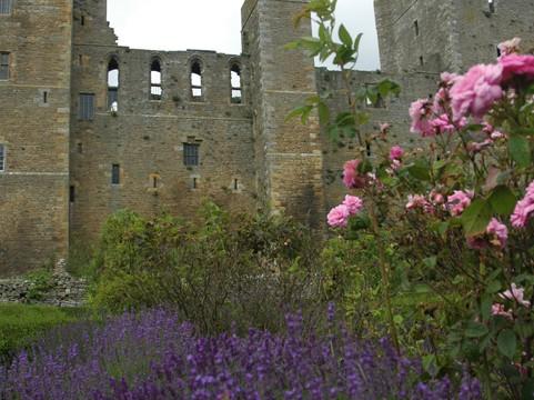 Medieval Rose Gardens